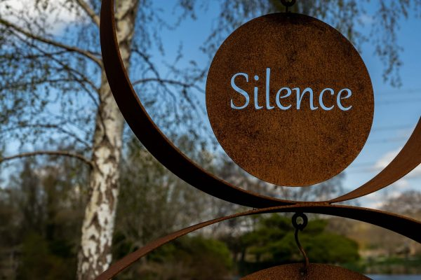 How to Break the Shell of Silence ?  